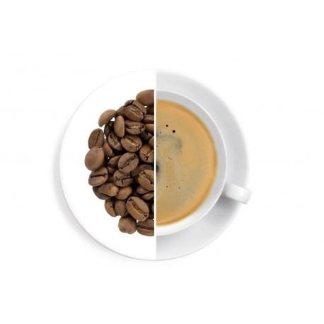 Brazílie Santos Estuário - káva