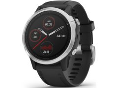 Garmin Fenix 6S Silver/Black Band 010-02159-01