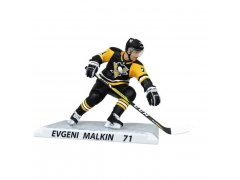 Pittsburgh Penguins NHL Team Set